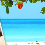 Summer Enrichment Program 2013